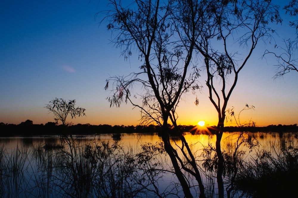 sale wetlands