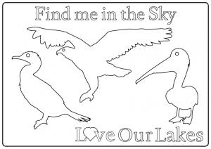 CIP-LOL-Sky