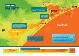 Gippsland Lakes Water Process - Salinity