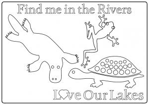 CIP-LOL-Rivers