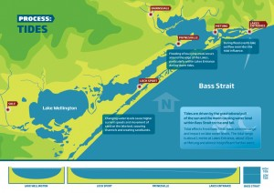 Gippsland Lakes Water Process - Tides