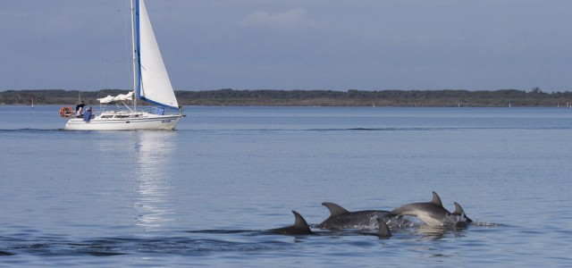 Gips boating around Burru (002)
