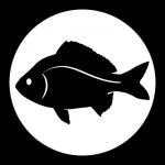sogl-icon-fish